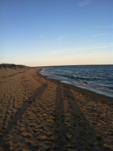 Popponesset Beach, Cape Cod, June 21, 2014