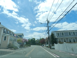 Houses in Nahant.